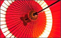 蛇の目傘の写真