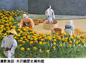紅花摘みを表した人形の写真(撮影施設:米沢織歴史資料館)