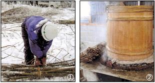 楮の刈り込み作業とふかしの写真